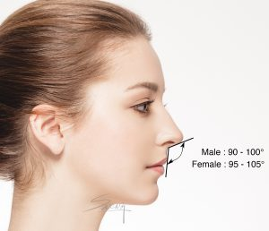 Facial proportion - Columellar labial angle - Rhinoplasty - side view