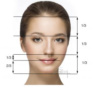 Facial proportion - Rhinoplasty - front