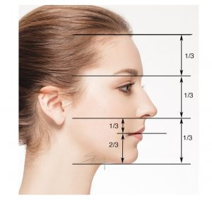 Facial proportion - Rhinoplasty - Side